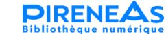 Accéder à la page d'accueil du site 'pireneas'